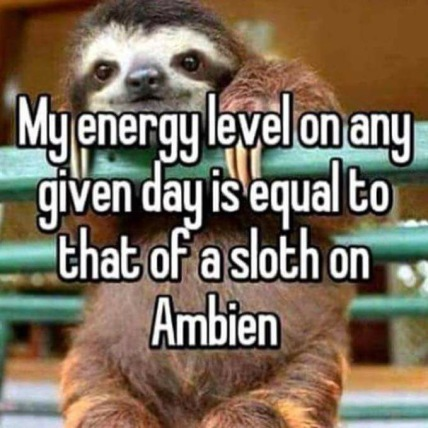 "slot hanging on to pole with text ""my energy level on any given day is equal to that of a sloth on Ambien"""